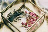 Агентство Wedding Agency, фото №3